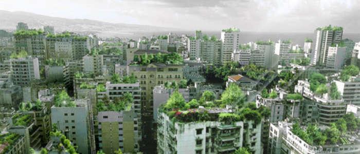 Большой город, Китай 2