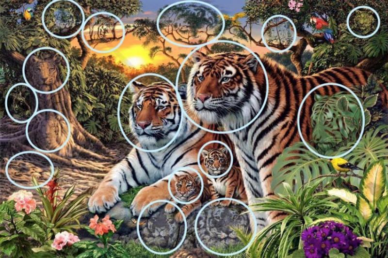 головоломка с тиграми