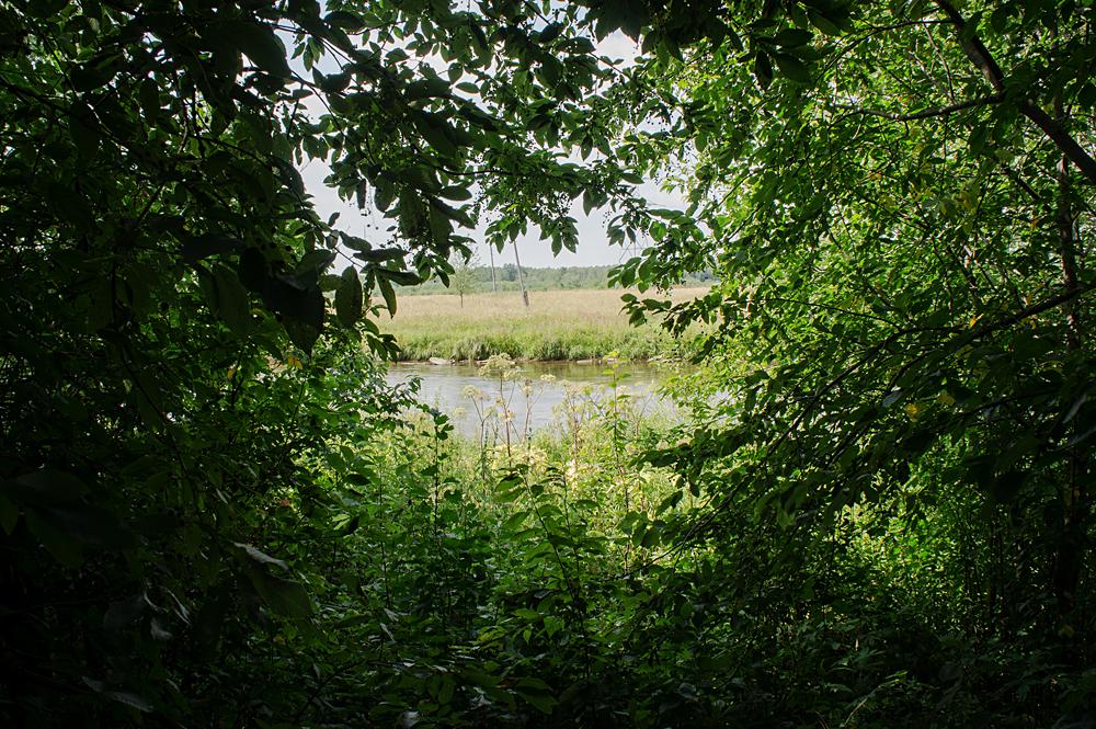Соликамск. Вид на реку Усолка в Ботаническом саду