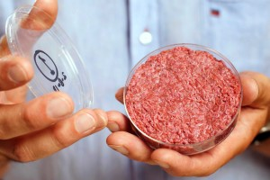 the-world27s-first-test-tube-grown-beef-burger-shown-to-cameras-data