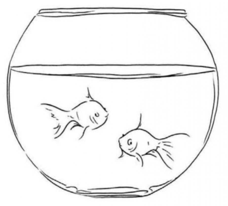 Рисунок рыбки в аквариуме карандашом