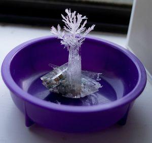 Как вырастить кристалл из соли в домашнихх услвоиях