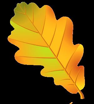Как модно нарисовать дубовый лист