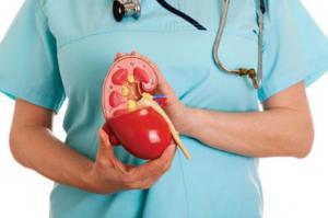 Назначения для лечения почек назначаются только врачом и проводятся под его контролем