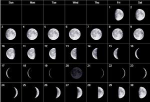 Особенности засолки капусты по лунному календарю