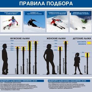 Размеры сноубордов по размерам