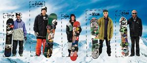 Какие есть сноуборды