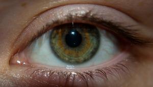 Характеристика людей с зелеными глазами