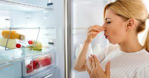 Чем избавиться от запаха в холодильнике