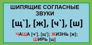 Шипящие согласные звуки в русском языке