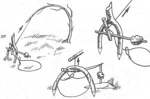 Как правильно изготовить петлю на зайца