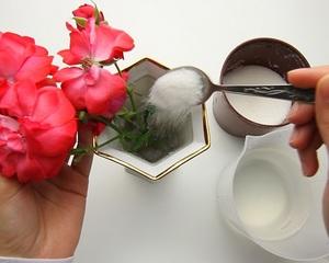 Основные правила сохранения роз на долгое время в вазах