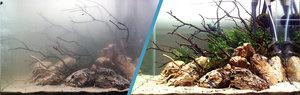 Прочему мутная вода в аквариуме