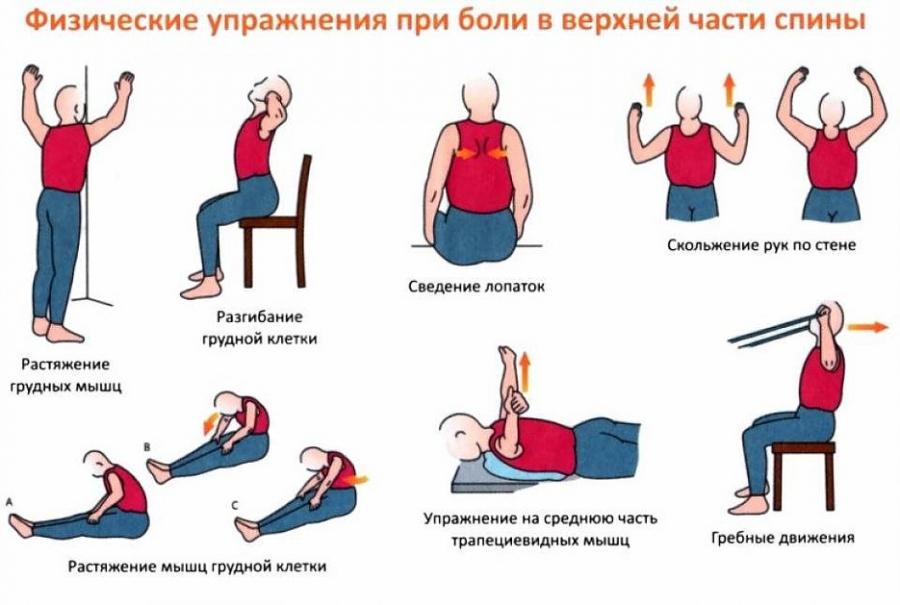 Упражнения отбол в спине